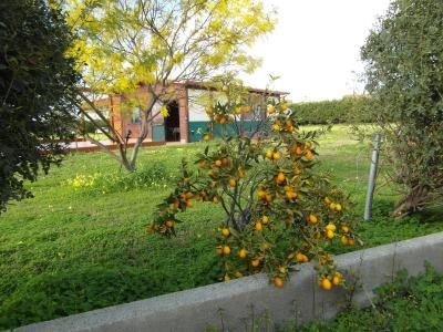 Agriturismo Il Gelsomino Ritrovato - Milazzo - Foto 39