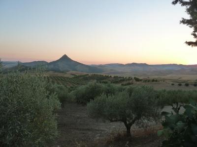 Masseria Floresta - San Cono - Foto 30