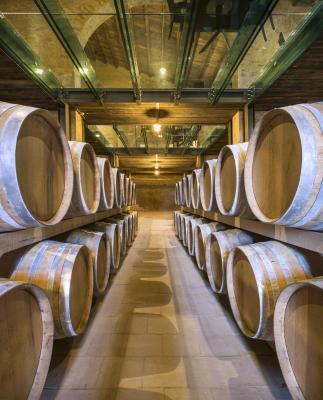 Wine Relais Feudi Del Pisciotto - Niscemi - Foto 30