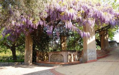 Antico Borgo Agriturismo - Calatabiano - Foto 9