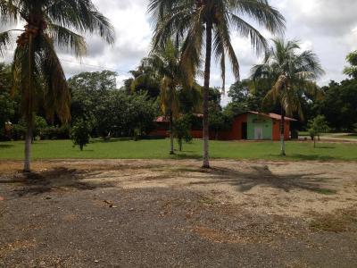 Hotel Diria Playa Tamarindo Santa Cruz Costa Rica