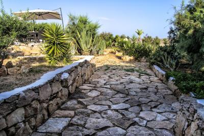 Cala Madonna Club Resort - Lampedusa - Foto 36
