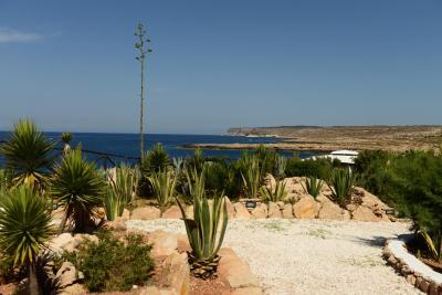 Cala Madonna Club Resort - Lampedusa - Foto 6