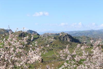 Agriturismo Feudo Muxarello - Aragona - Foto 31