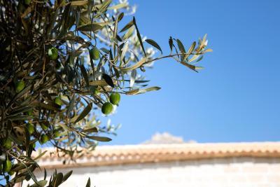 Il Borgo del Principino - Favignana - Foto 17