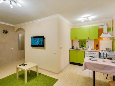 Apartamenty Na Pushkinskoy 120