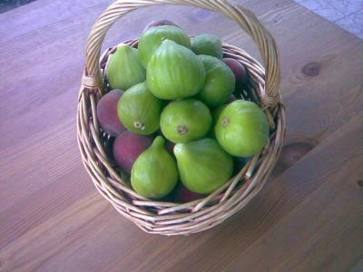 B&B Tra i Frutti - Racalmuto - Foto 22