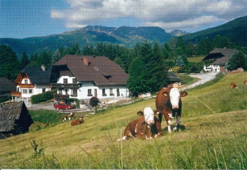 Fotos del hotel: Apartment Prodinger, Mariapfarr