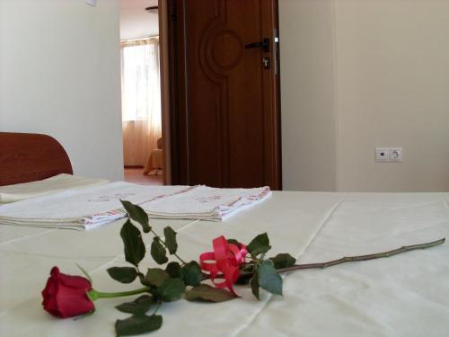 Hotellbilder: Park Apartments Popovi, Sandanski