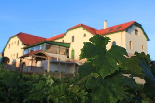 Hotel Pictures: Hotel Vinohrad, Milotice