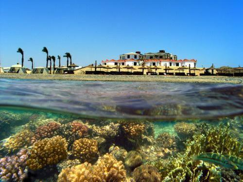 Hotel Pictures: Coral Garden Resort, Safaga