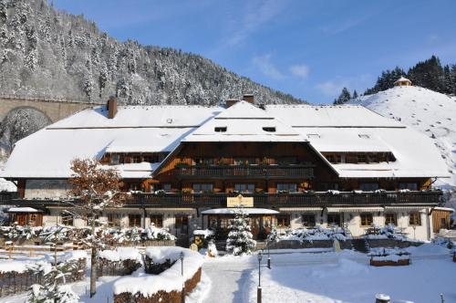 Hotel Pictures: , Breitnau