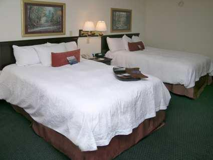 Hampton Inn Madison Review