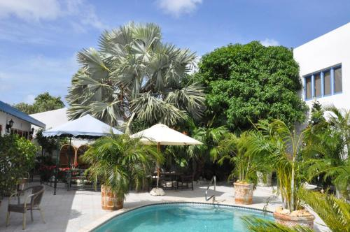 Fotografie hotelů: , Oranjestad