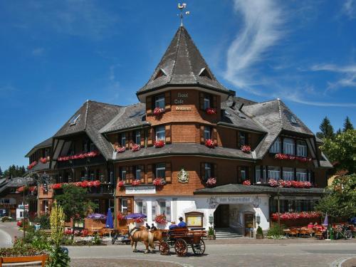 Hotel Pictures: Hotel Schwarzwaldhof, Hinterzarten
