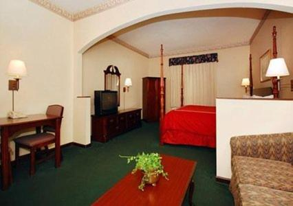 Comfort Suites Albany Review