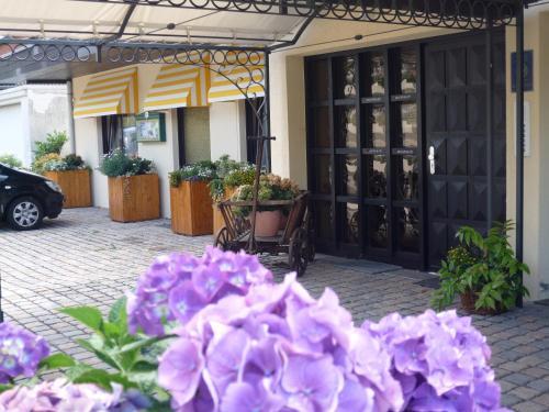 Hotel Pictures: , Niederdürenbach