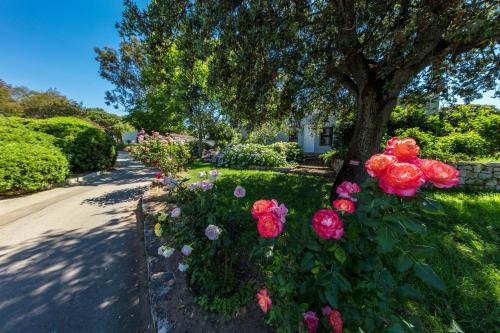 Um jardim em Residence Club Marina Viva