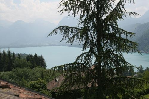 Hotel Pictures: Studio Talloires Lac d'Annecy, Talloires