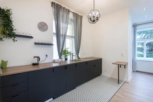 A cozinha ou cozinha compacta de Rehorova apartment