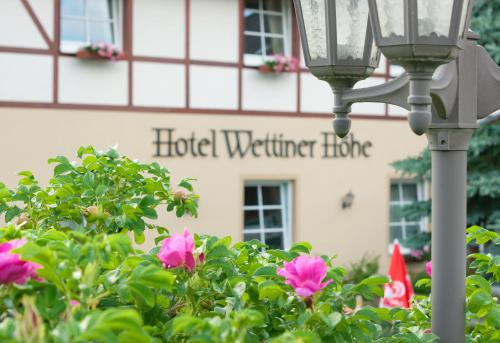 Hotel Pictures: Panorama Berghotel Wettiner Höhe, Seiffen