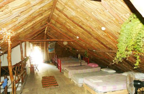 Xaman Eco-Hostel