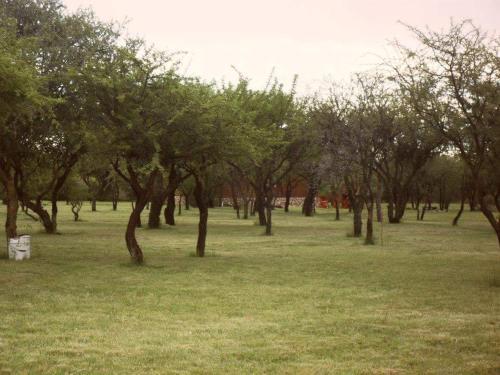 Un jardín fuera de La Urdimbre