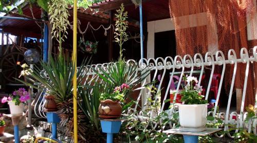 Hotellikuvia: Smile Bungalow, Chernomorets