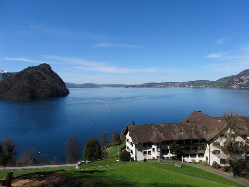 Hotel Pictures: See- und Seminarhotel FloraAlpina Vitznau, Vitznau