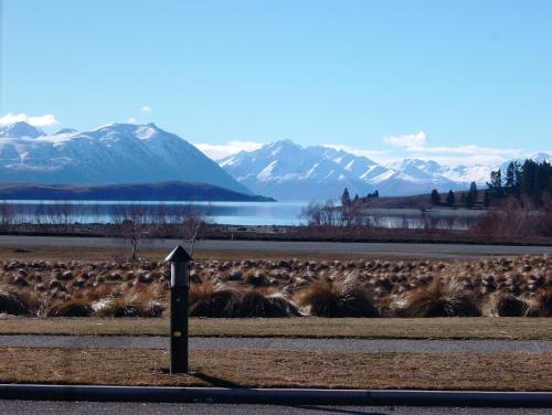 Lakeview Tekapo