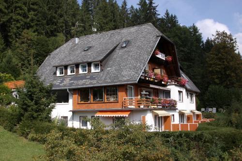 Hotel Pictures: Hotel-Pension Thomé, Hinterzarten