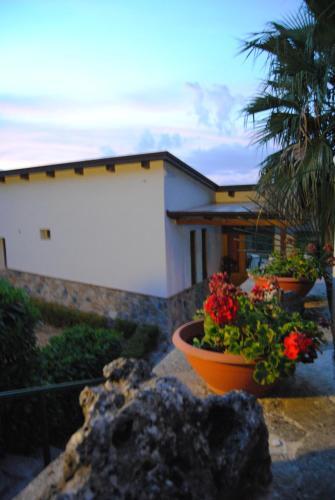 Villa Mola Bed And Breakfast