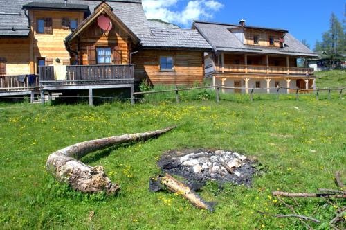 酒店图片: Lärchenhütte, Tauplitz