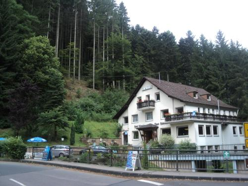 Hotel Pictures: Haus am Bach, Malberg