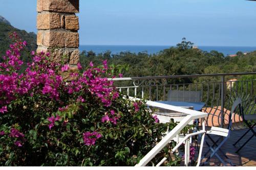 Hotel Pictures: , Porto Ota