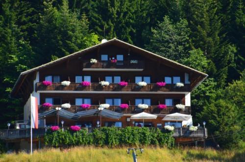 Hotelbilleder: Berghotel Predigstuhl, Bad Goisern