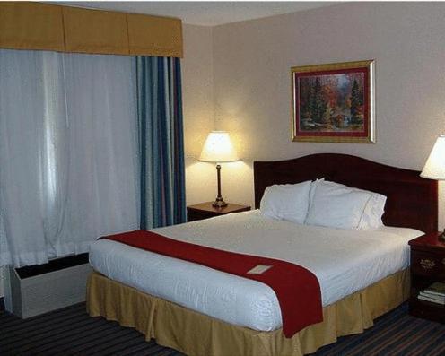 Holiday Inn Express Chateau Elan Lodge Review