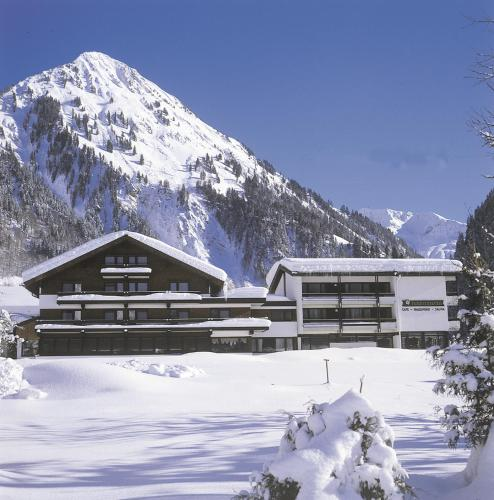 酒店图片: Hotel Edelweiss, 施科佩尔瑙
