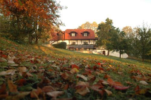 Hotel Pictures: Penzion Dvůr, Obora
