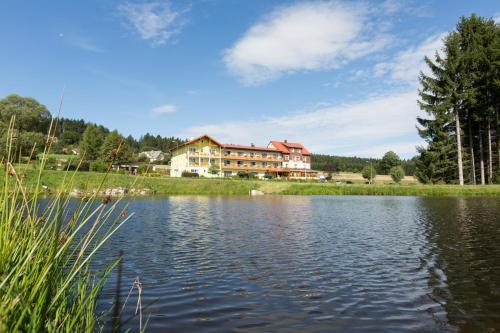 Hotel Pictures: Gasthof-Pension Nordwald, Hirschenwies