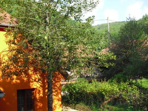 Hotel Pictures: , Rammersmatt