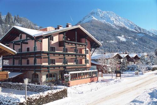 Foto Hotel: Hotel Alpina, Kleinarl