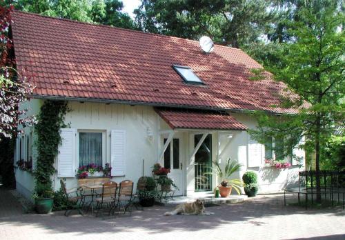 Hotel Pictures: Biggis Waldpension, Michendorf