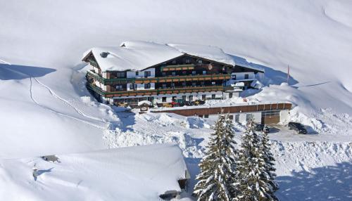 酒店图片: Alpengasthof-Hotel Kopphütte, 霍克康尼边的米尔巴赫