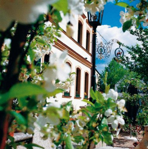 Hotel Pictures: , Thannhausen