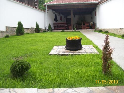 ホテル写真: Hera Guest House, Chiflik