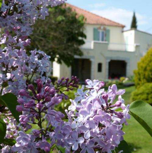 Hotel Pictures: , Pinel-Hauterive