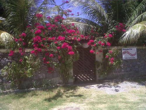 Hotel Pictures: Pousada Praia Das Conchas, Barra de São Miguel