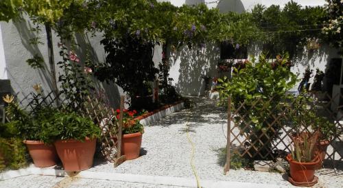 Hotel Pictures: Shambala Retreat, Serón