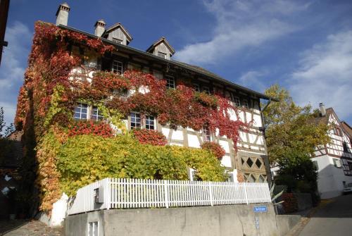 Hotel Pictures: , Uhwiesen